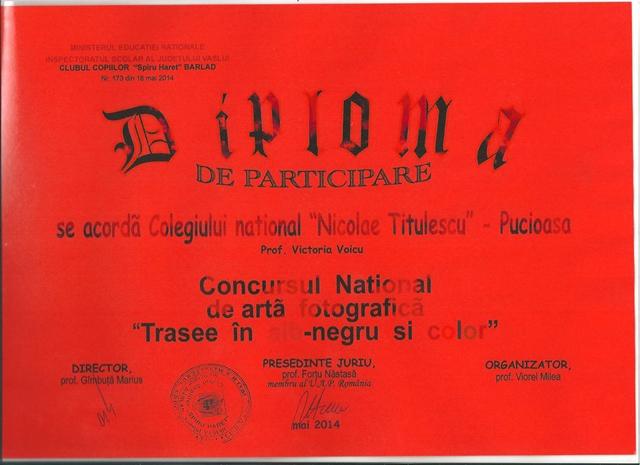 diploma 01